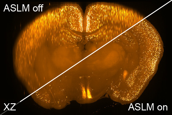 Axially scanned light-sheet microscopy